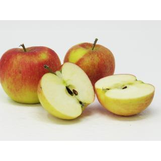 """Äpfel - """"Topaz"""" 7kg - Kiste"""