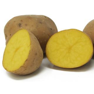 Kartoffeln festk. - Übergröße, lose