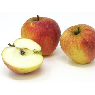 "Äpfel - ""Finkenwerder Herbstprinz"" - 2,5kg Kiste"