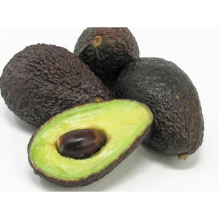 "Avocado ""Hass"" Mini"