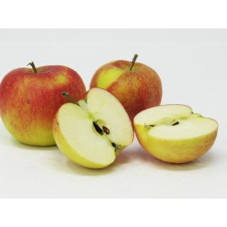 """Äpfel - """"Topaz"""" - 2,5kg-Kiste"""