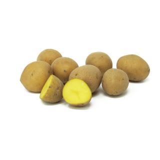 Kartoffeln festk. - kleine Sortierung, lose