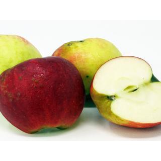 Äpfel 2. Wahl  (kl.Schalenfehler)